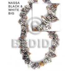 Black and White 16 inches Nassa Black and White Shell Whole Shell Beads BFJ042SPS