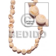 Natural 16 inches Exotica Luhuanus Shell Whole Shell Beads BFJ056SPS