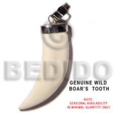 Bone Boars Tooth White Natural Pendants - Bone Horn Pendants BFJ5492P