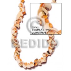 Orange 16 inches Luhuanus Red Everlasting Beads Strands Shell Crazy Cut Shell Beads BFJ057SPS