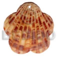 Piktin Shell Scallop Natural Pendants - Shell Pendants BFJ5108P