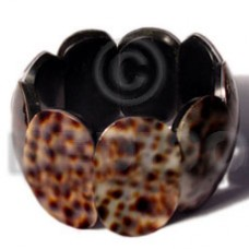 Tiger Cowrie Tiger Shell Polished Elastic 35 x 20 mm Bangles - Shell Bangles BFJ094BL