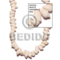 Tiger Nassa White Shell 16 inches Natural Shell Whole Shell Beads BFJ055SPS