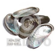 Unprocessed Raw Abalone RAW SHELLS BFJ012RS