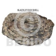 Unprocessed Raw Black Lip Shell RAW SHELLS BFJ001RS