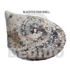 Unprocessed Raw Black Tab Shell RAW SHELLS BFJ007RS