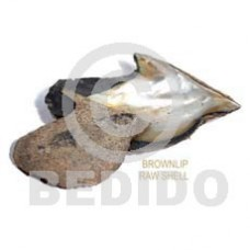 Unprocessed Raw Brown Lip Shell RAW SHELLS BFJ002RS