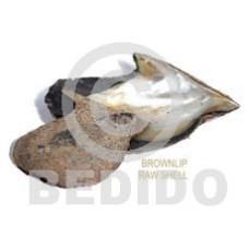 Unprocessed Raw Brown Lip Shell RAW SHELLS BFJ002RS