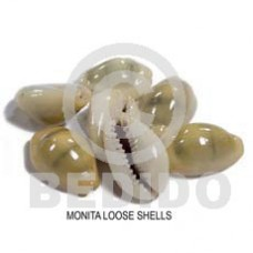 Unprocessed Raw Monita Shell RAW SHELLS BFJ013RS