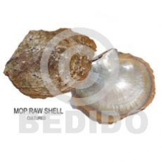 Unprocessed Raw Mother-Of-Pearl RAW SHELLS BFJ006RS