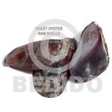 Unprocessed Raw Violet Oyster Shells RAW SHELLS BFJ011RS