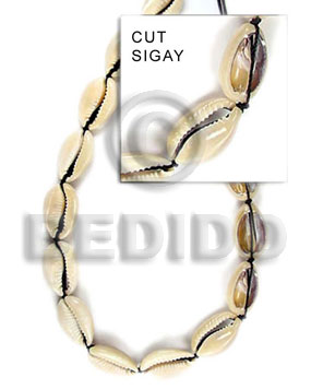 Natural 16 inches Sigay Shell Shell Whole Shell Beads BFJ038SPS