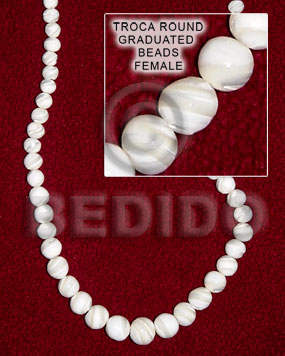 Natural 16 inches Trocha Shell Graduated Round Shell Round Shell Beads BFJ002SPS