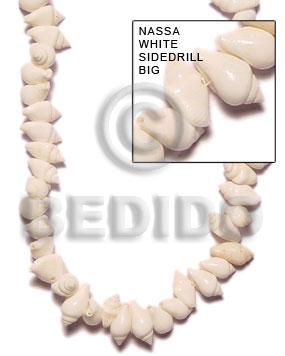 Tiger Nassa White Shell 16 inches Natural Shell Whole Shell Beads BFJ055SPS